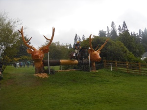 The Stags Heads